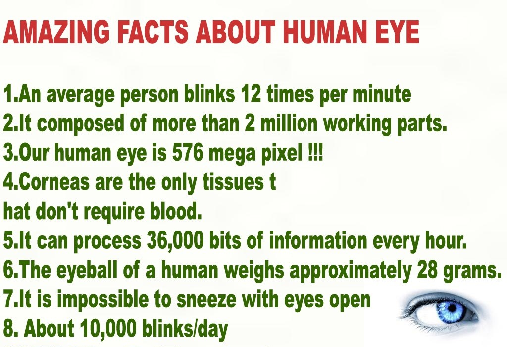 AMAZING FACTS ABOUT HUMAN EYE