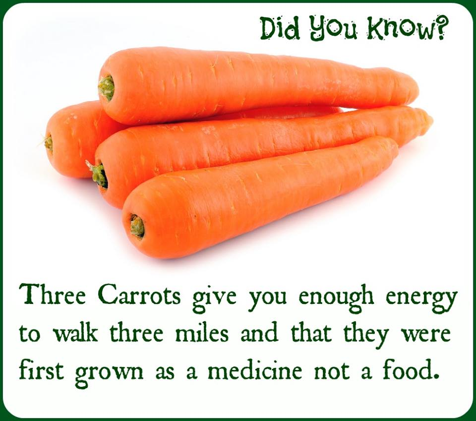 Benefits-Of-Carrots_81280.jpeg